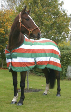 Horseware Team Ireland Stable Sheet Best Price