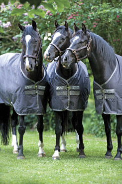 Amigo Bravo-12 by Horseware  Pony Lightweight Turnout Blanket Best Price