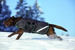 Amigo by Horseware 200gm Dog Blanket Best Price
