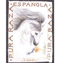 Ballador Andalusian Art Print by Jan Kunster Best Price