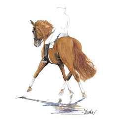 Berstein Dressage Art Print  by Jan Kunster Best Price