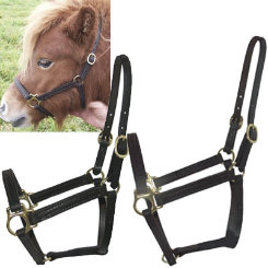 Intrepid Miniature Horse Leather Stable Halter Best Price
