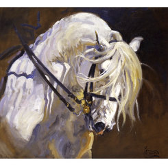 Andalusian Stallion Art Print by Malcom Coward Best Price
