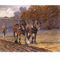Autumn Furrows Art Print by Malcom Coward Best Price