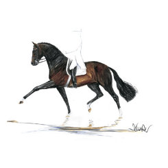 Biotop Dressage Art Print  by Jan Kunster Best Price