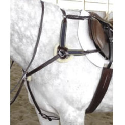 Exselle Five Point Breastcollar Best Price