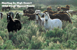 Intrepid Meeting On High Desert Puzzle Best Price