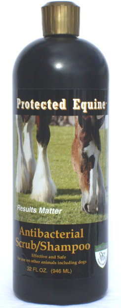 Americas Acres Protected Equine AntiBacterial Scrub/Shampoo Best Price