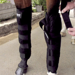 Ice Horse Knee to Ankle Wrap Best Price