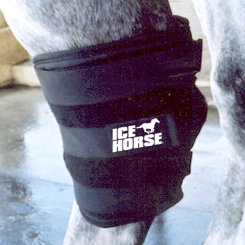 Ice Horse Hock Wrap Best Price