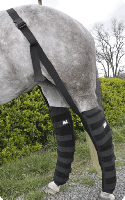 Ice Horse Full Leg Wraps Best Price