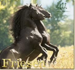 Gabriele Boiselle Friesian Large Calendar 2012 Best Price