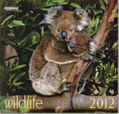 Gabriele Boiselle Wildlife Art Calendar 2012 Best Price
