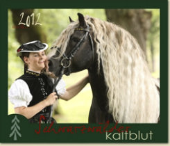 Gabriele Boiselle Black Forest Calendar 2012 Best Price