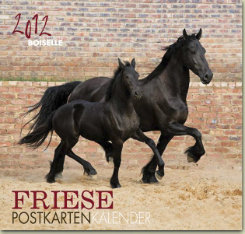 Gabriele Boisselle Friesian Post Card Calendar 2012 Best Price
