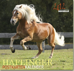Gabriele Boisselle Haflinger Post Card Calendar 2012 Best Price