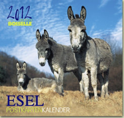 Gabriele Boiselle Donkey Post Card Calendar 2012 Best Price
