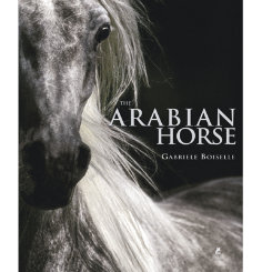 The Arabian Horse by Gabriele Boiselle Best Price