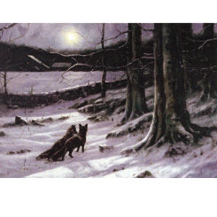 Sally Mitchell  The Midnight Tryst Chirstmas Cards Best Price
