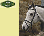 Henri de Rivel Collection Padded Dressage Bridle