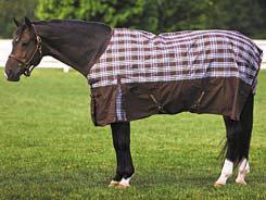 Tuffrider 600D Plaid Pony Turnout Sheet Best Price
