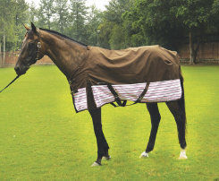 Equine Couture Madison Turnout Horse Sheet Best Price