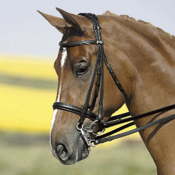 Kieffer Ines Double Bridle with Chome Fittings Best Price