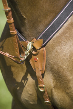 Kieffer Arlene Elastic Breastsplate with Martingale Best Price