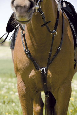 Kieffer Leather Breastplate with Martingale Best Price