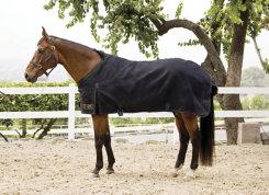 Kensington Kens-i-Tech Lightweight Turnout Blanket Best Price