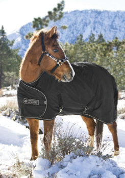 Kensington Pony/Yearling Turnout Blanket Best Price