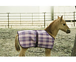 Kensington Protective Fly Sheet - Foal