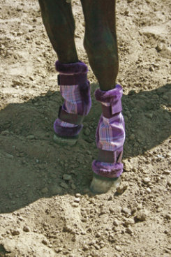Kensington Pony Fly Boots Best Price