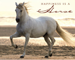 Kelley Happiness is Horse 2012 Calendar Best Price