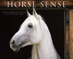 Kelley Horse Sense 2012 Calendar Best Price