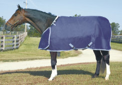 HUG Heavyweight Horse Blanket Best Price