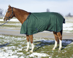 HUG Abrazo Midweight Turnout Horse Blanket Best Price