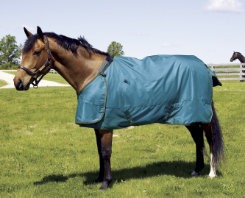 HUG Abrazo Lightweight Turnout Horse Sheet (no fill) Best Price