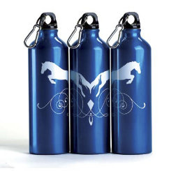 Kelley Aluminum Sport Bottle Best Price