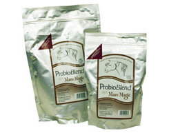 Solid Ideas Probioblend Best Price