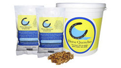 Horse Quencher Best Price