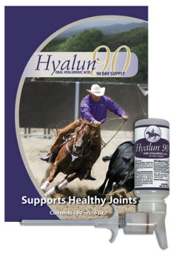 Hyalun Oral Equine Hyaluronic Acid Equine Supplement 90 Best Price