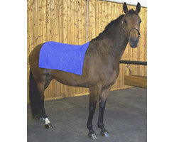 Coldflex Vet and Equine Blanket Best Price