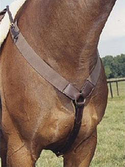Nunn Finer All Purpose Elastic Breastplate Best Price