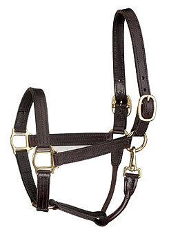 Perri's Leather Collection Premium Track Style with Snap Leather Show Halter