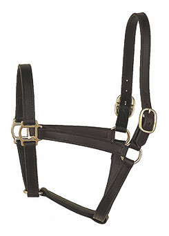 Perri's Leather Collection Track Style Leather Turnout Halter