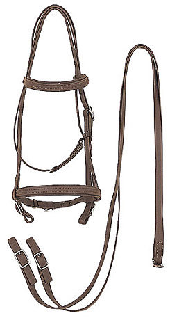 Perri's Leather Draft Horse Bridle