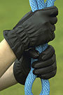 Perri's Leather Black Leather Glove with Spandex