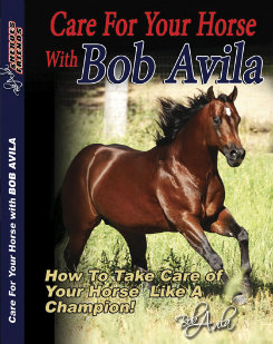 Professional's Choice Care For Your Horse with Bob Avila  DVD Best Price