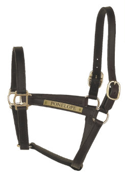 Perri's Custom 1 Track Turnout Halter Best Price